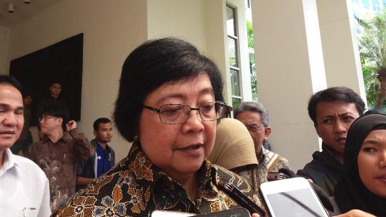 Menteri LHK Lapor soal Perhutanan Sosial ke Presiden Jokowi