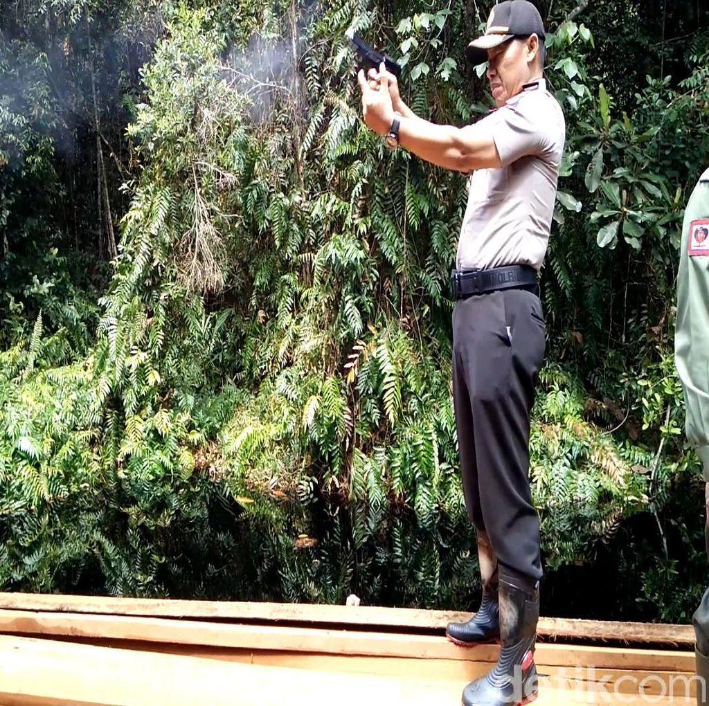 Berperang Melawan Illegal Logging di Cagar Biosfer