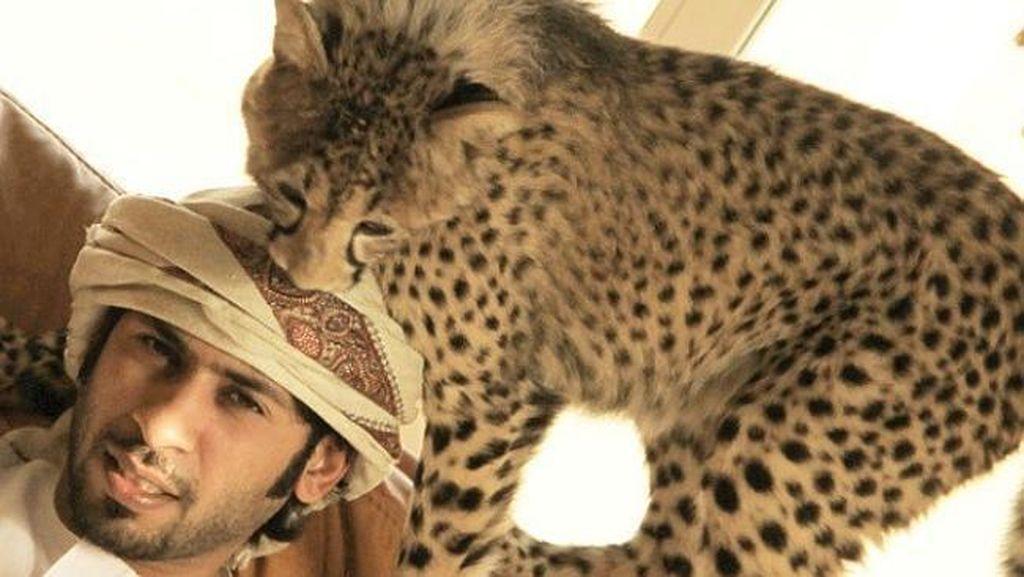 Hobi Pelihara Singa, Pria Arab Ini Ngetop di Instagram