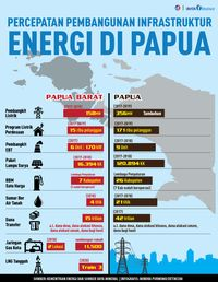 Jokowi Genjot Infrastruktur Energi di Papua