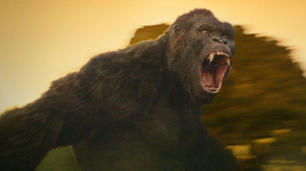 Kong: Skull Island, Petualangan dengan Berbagai Kejutan