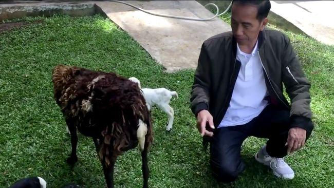 Kabar tentang Ahmad Dhani yang Berutang dan Mulan Jualan Ceker & Cilok