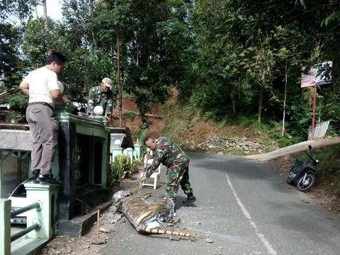 Dipicu Bahasan di Medsos, Patung Macan Koramil Cisewu Dibongkar