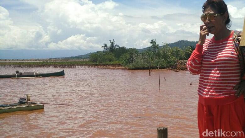 Sidak ke Kolaka, Susi Bakal Tegur Perusahaan Tambang yang Cemari Laut