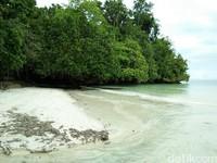 Foto: Pasir putih, air yang jernih, dermaga instagrammble dan pohon mangrove besar yang fotogenik menjadikan Pantai Waiwo sayang untuk dilewatkan (Bonauli/detikTravel)