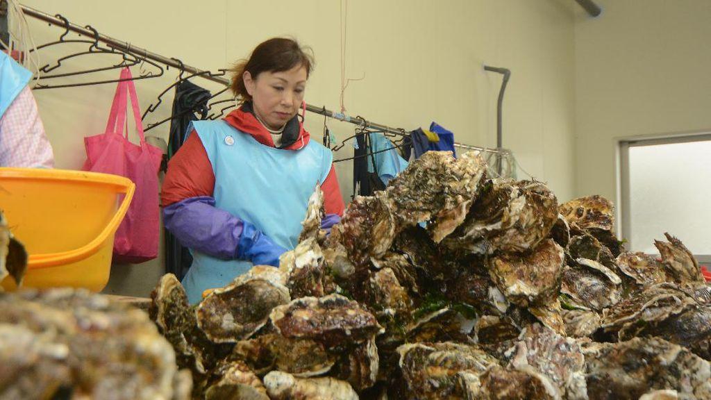 Berbekal Semangat dan Keramahan Lady Oyster Hadapi Musibah Tsunami