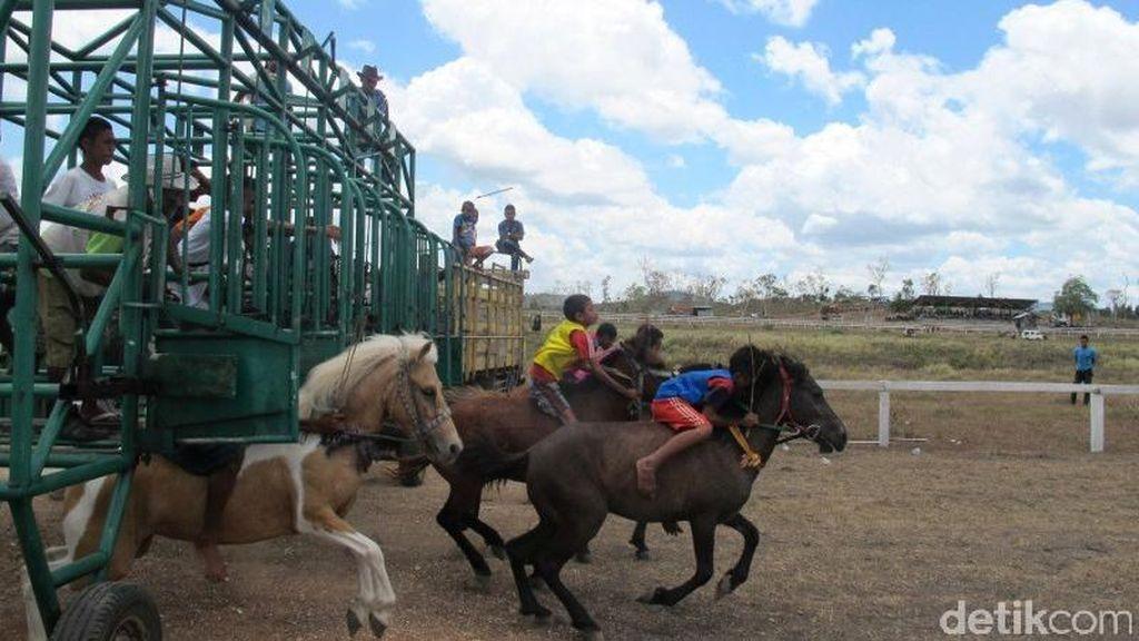 Keren! Pacuan Kuda Ala Koboi di Pedalaman Atambua