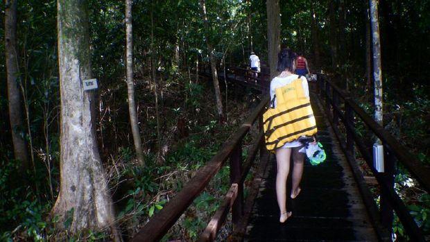 Perjalan menuju Danau Kakaban (Bonauli/detikTravel)