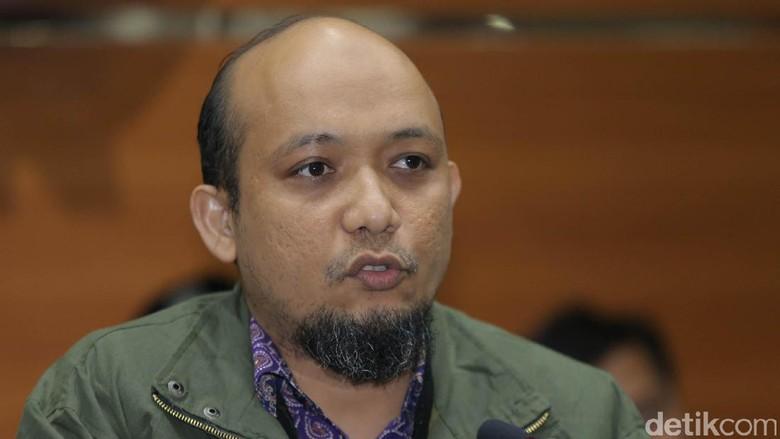 Profil dan Kiprah Novel Baswedan Berantas Korupsi Kelas Kakap