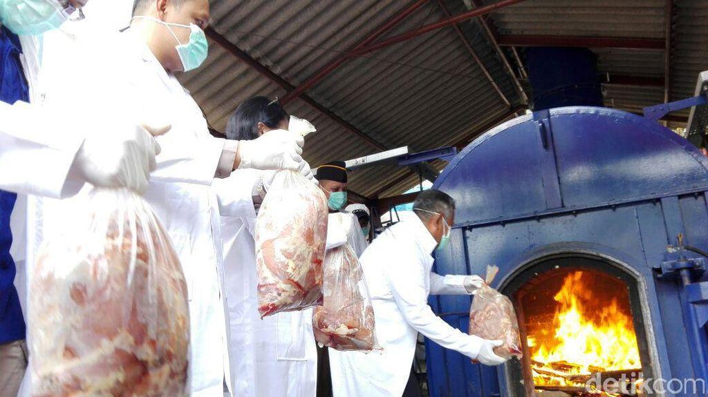 Daging Celeng Dipasok ke Jawa dari 3 Daerah di Sumatera