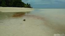 Saat Air Laut Derawan Berubah Jadi Pink dan Berbahaya!