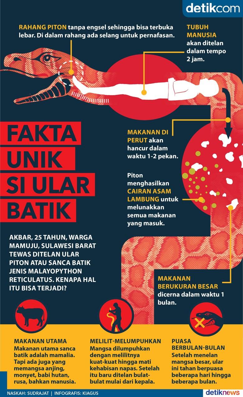 Fakta Unik Si Ular Batik