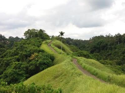 Bukit Campuhan, Spot Jogging Cantik di Bali