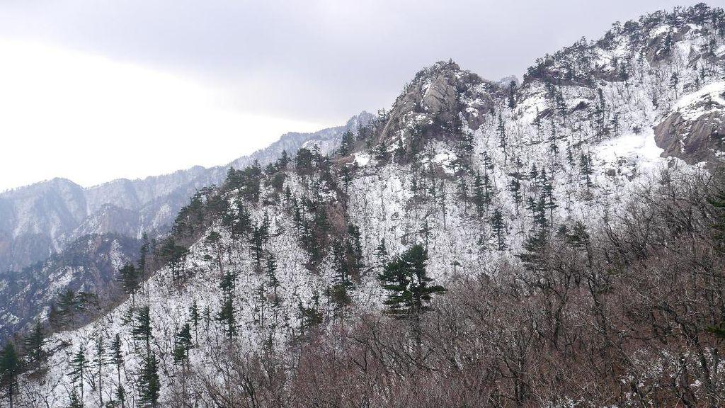 Tips Liburan ke Gunung Seorak Korea Saat Musim Semi