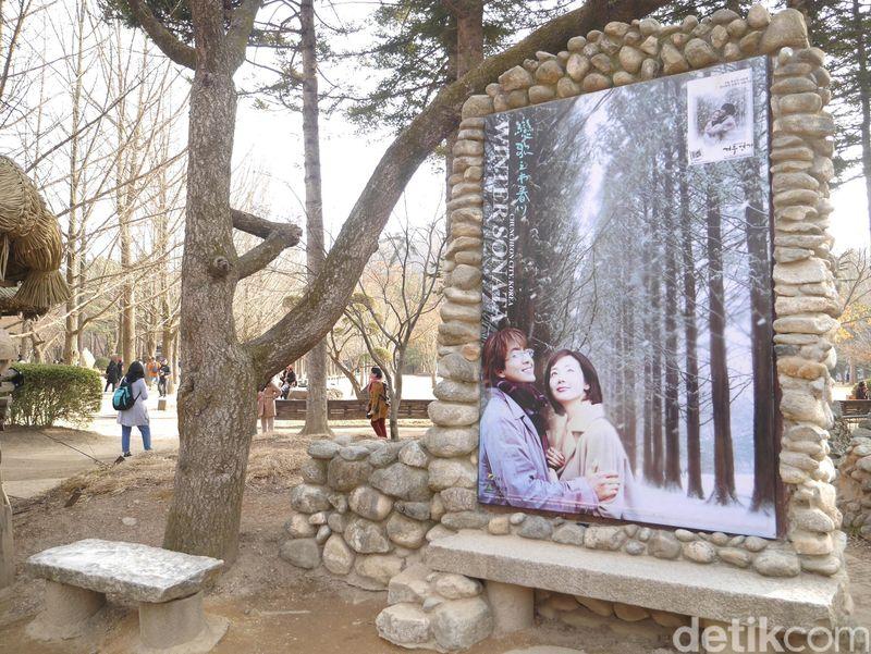 Nami Island merupakan sebuah pulau buatan di Chuncheon, Provinsi Gangwon, Korea Selatan. Pulau kecil ini kian populer sejak menjadi lokasi syuting drama Korea Winter Sonata pada 2002 (Kurnia/detikTravel)