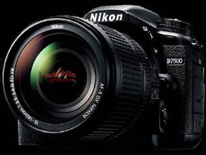 Foto: Nikon D7500/nokishita
