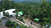 Berwisata dan Belajar Beternak di Vila Ternak Cikeray, Cilegon