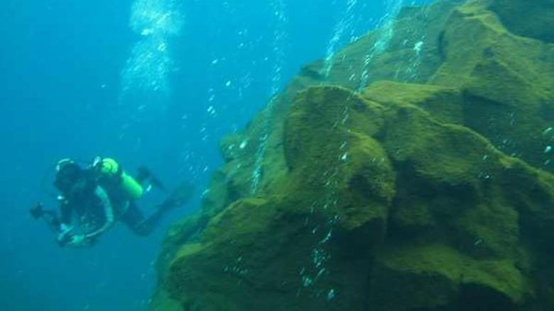 Menyelam di antara gunung api bawah laut (Hani Azzahra/dtraveler)