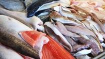 Ikan Jadi Menu Favorit Australia di Hari Paskah