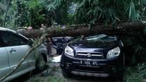 Pengendara Motor Tewas Tertimpa Pohon Tumbang di Maribaya Lembang