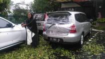 Mobil Livina Rusak Tertimpa Pohon di Dago Bandung