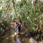 Garap Proyek 35 Ribu MW, Perempuan Ini Keluar Masuk Hutan Kalimantan