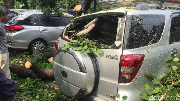 Pohon tumbang menimpa 5 mobil.