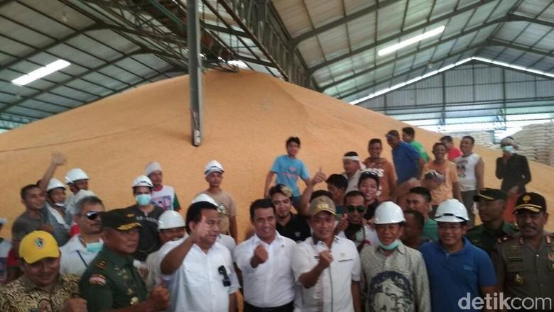 Pasokan Jagung Gorontalo 10 Ribu Ton/Hari, RI Tak Perlu Impor