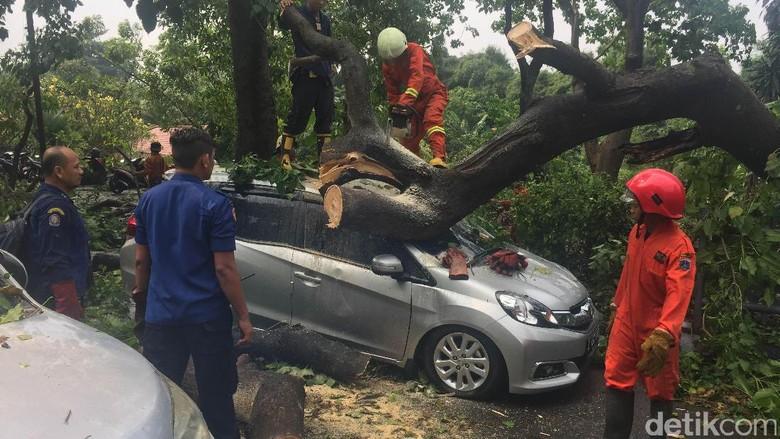 5 Unit Mobil dan Sejumlah Motor Tertimpa Pohon Tumbang di Jaktim