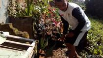 Hari Bumi, Korban Banjir Bandang Garut Buat Taman Apotek Hidup