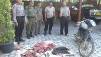 Polisi Buru Pelaku Perburuan Liar di TN Merubetiri