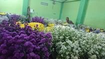 Warna-warni, Ini Pasar Karangan Bunga untuk Ahok