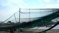 Berapa Banyak Nelayan RI yang Tangkap Ikan Pakai Cantrang?