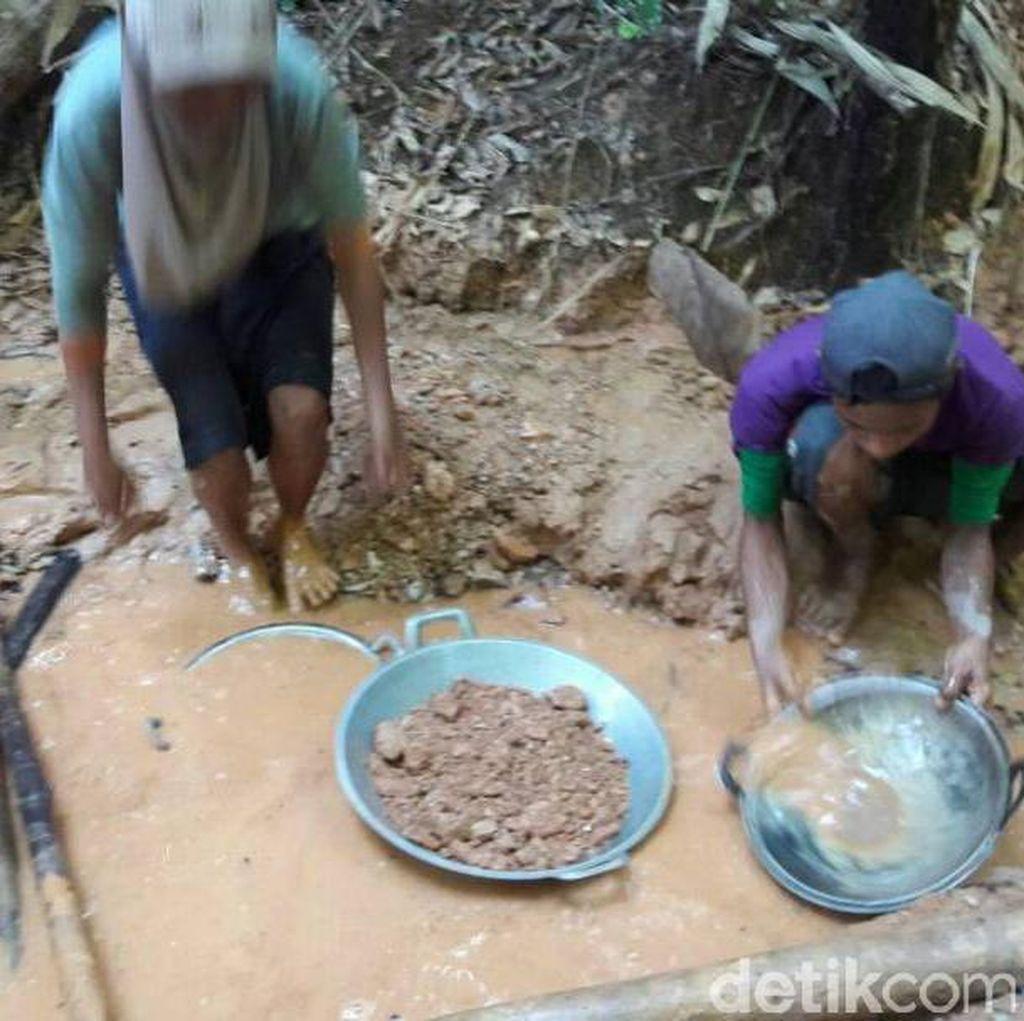 Penampakan Keriuhan Warga di Hutan Kolaka Berburu Serbuk Emas