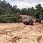 Ada Jalan Paralel, Warga Pedalaman Kalimantan Makin Mudah ke Kota
