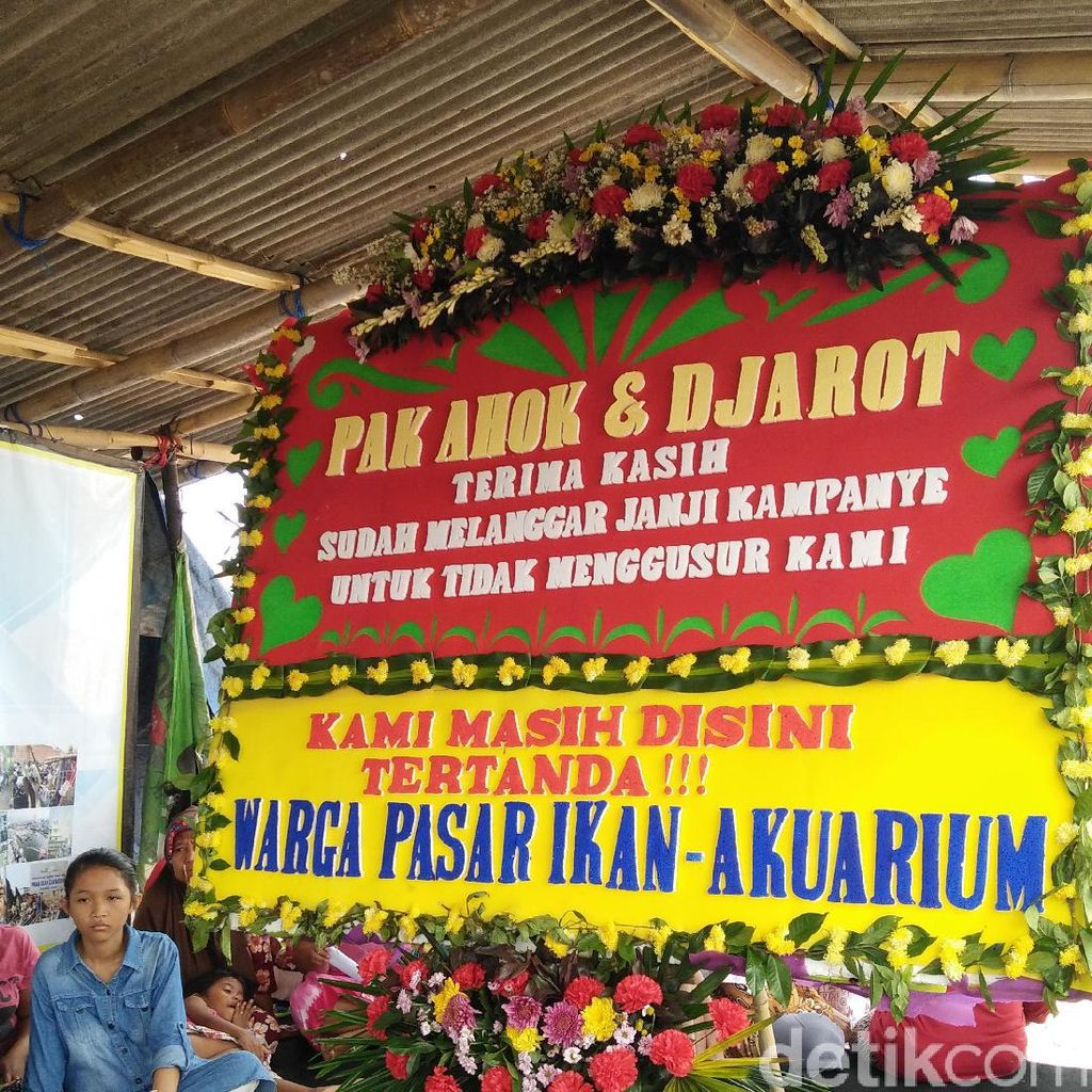 Kecewa pada Ahok, Warga Kampung Akuarium akan Kirim Karangan Bunga