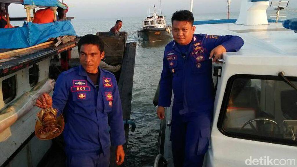 Digagalkan, Penyelundupan 300 Ketam dari Langkat ke Thailand