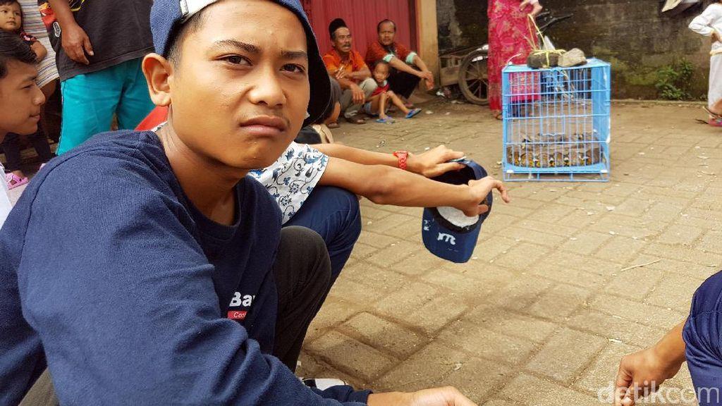 Cerita Hendrik Remaja 16 Tahun yang Tangkap Sanca Kembang 5 Meter