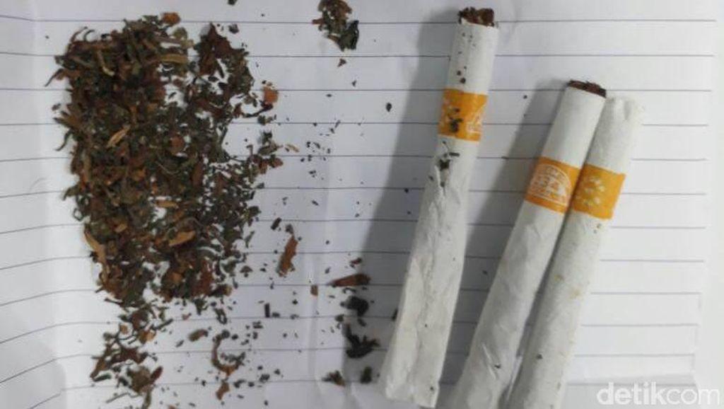 Iwa K Ditangkap, Petugas Curiga Bentuk Rokok dan Tembakau Hijau