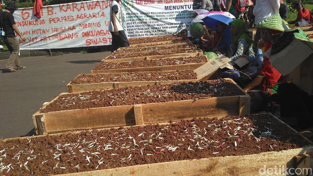 Hari Buruh, Petani Telukjambe Gelar Aksi Kubur Diri