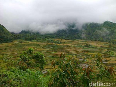 Pesan JK Kembangkan Puncak Sulawesi Selatan