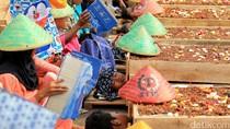 Solusi Jokowi untuk Petani Telukjambe Karawang: Siapkan Lahan