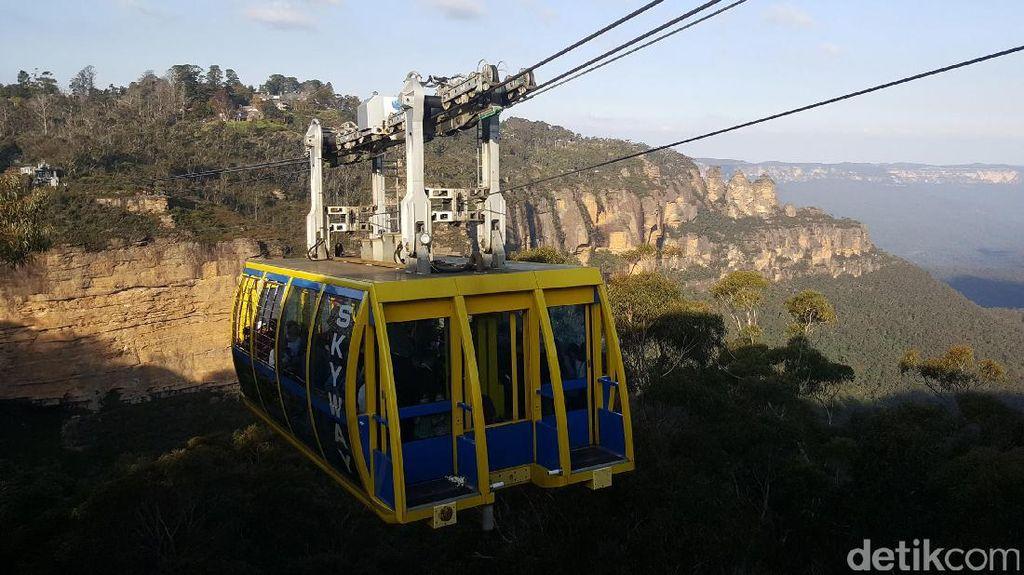 Kanguru Selfie & Kereta Gantung Tertinggi di Australia