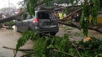 Hujan dan Angin Kencang Landa Medan, Satu Mobil Tertimpa Pohon