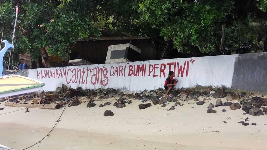 Dukung Susi, Nelayan Pulau Ini Bikin Graffiti Tolak Cantrang