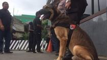 Antisipasi Massa Rusuh, 2 Anjing Pelacak Dikirim ke Mako Brimob