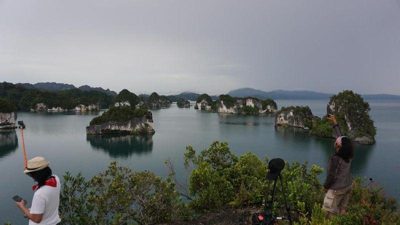 Teluk Kabui namanya, satu dari 3 tempat gugusan pulau karang di Raja Ampat. Banyak pualu karang yang beraneka ukuran di sana (Masaul/detikTravel)