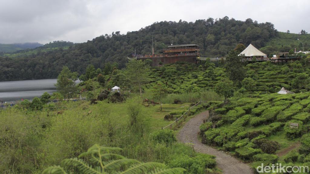 Sayang Bumi! Liburan Sambil Ramai-ramai Menanam Pohon di Bandung