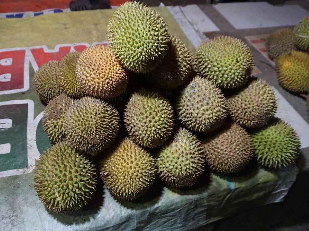 Wisata Malam di Pohuwato, Asyiknya Berburu Durian Mungil!