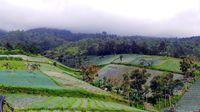 Pemandangan indah dari Candi Cetho (Wahyu/detikTravel)